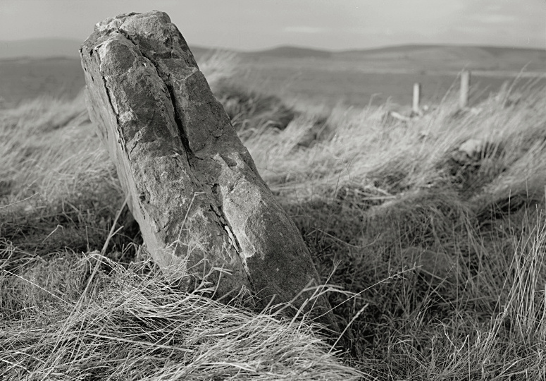 Orkney Stone OldPoint
